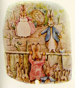Beatrix Potter from The Tale of the Flopsy Bunnies