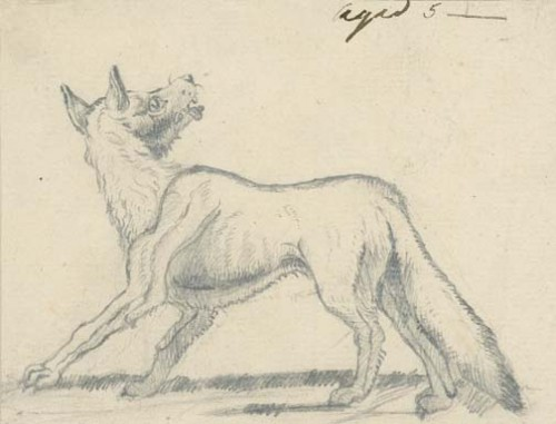 Edwin_Landseer_A_fox_in_profile_1807