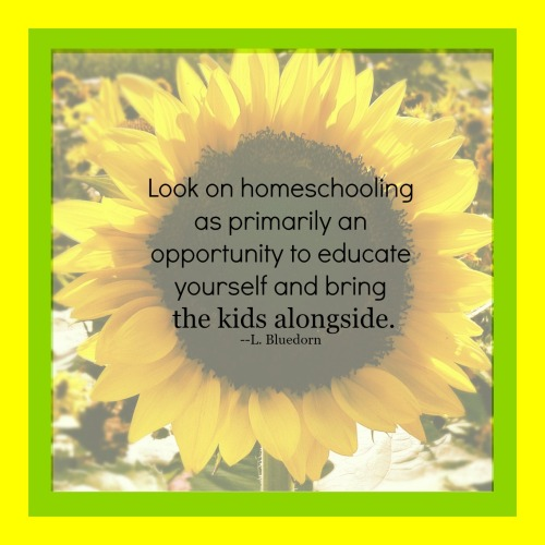 Look on homeschooling as primarily