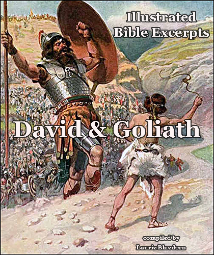 David and Goliath cover for blog