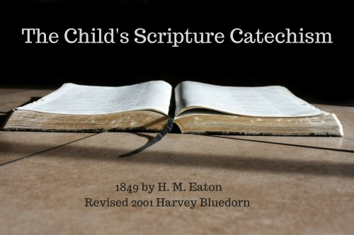 The Child's Scripture Catechism